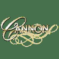 https://summitcreativemarketing.com/wp-content/uploads/2020/04/cannon.png